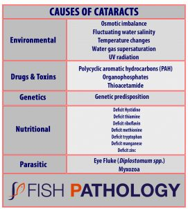 Causes of cataracts